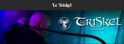 Nord – Le Triskel – Maître Doberman