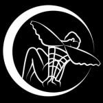 Illustration du profil de dresseurdefee